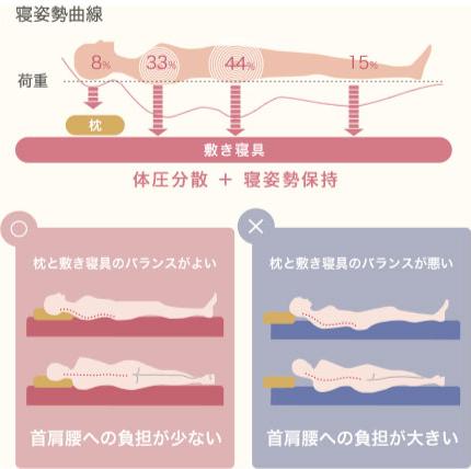 寝姿勢曲線